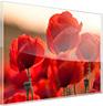 acrylglas tabellen darstellung
