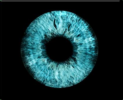Beispiel Irisfoto als Produkt